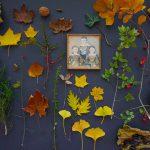 Herbstspaziergänge und Muffins mit Birne, Tonka und Crumble